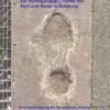 Neue DISS Online-Broschüre: Spurensuche